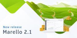 new release marello 2.1